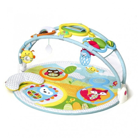 Picture of Skip Hop® Activity Gym Explore&More