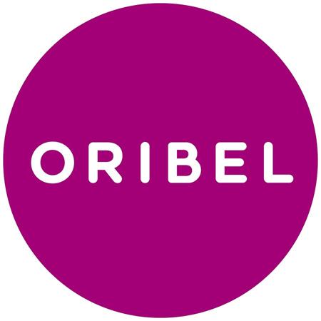 Picture of Oribel® Vertiplay Wall Toy Roarry Door Knocker