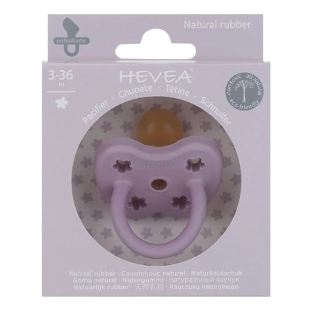 Picture of Hevea® Pacifier Orthodontic (3-36m) Lavander