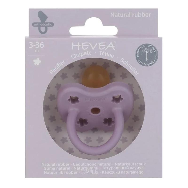 Picture of Hevea® Pacifier Orthodontic (3-36m) Lavander