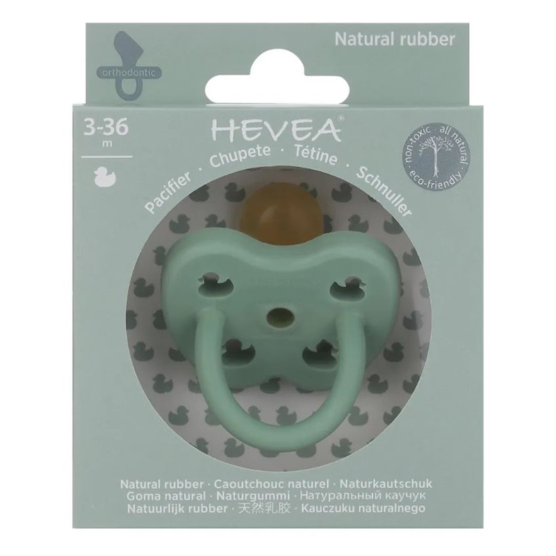 Picture of Hevea® Pacifier Orthodontic (3-36m) Pistachio