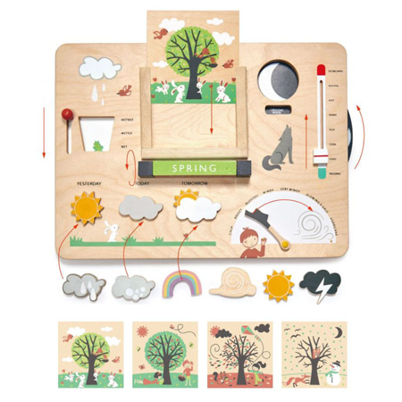 Picture of Tender Leaf Toys® Weather Watch