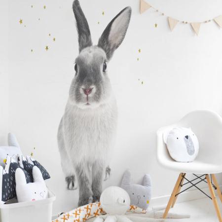 Picture of Dekornik® Bunny Harry S